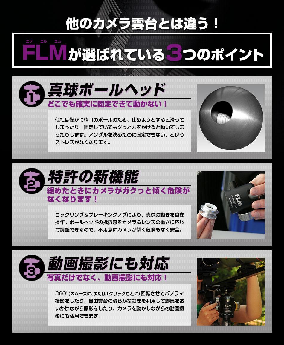 flm_test
